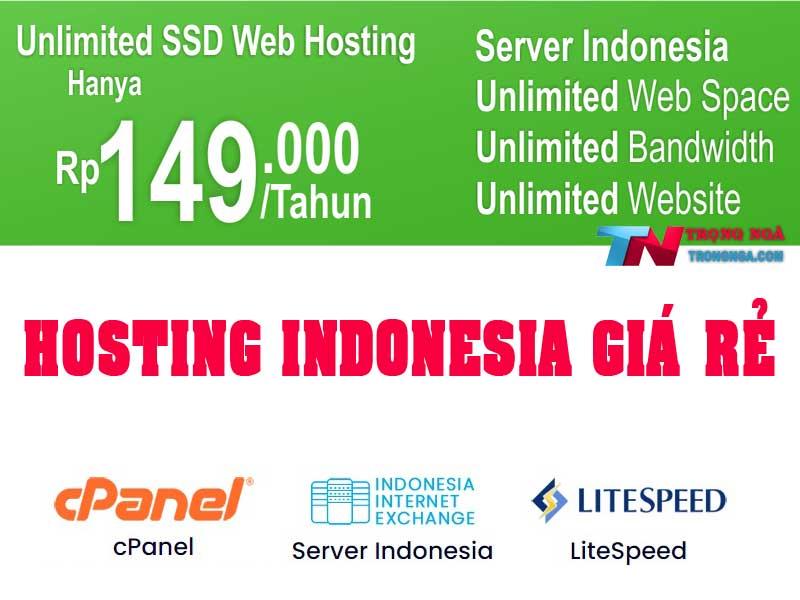 hosting indonesia giá rẻ