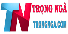 logo trongnga.com